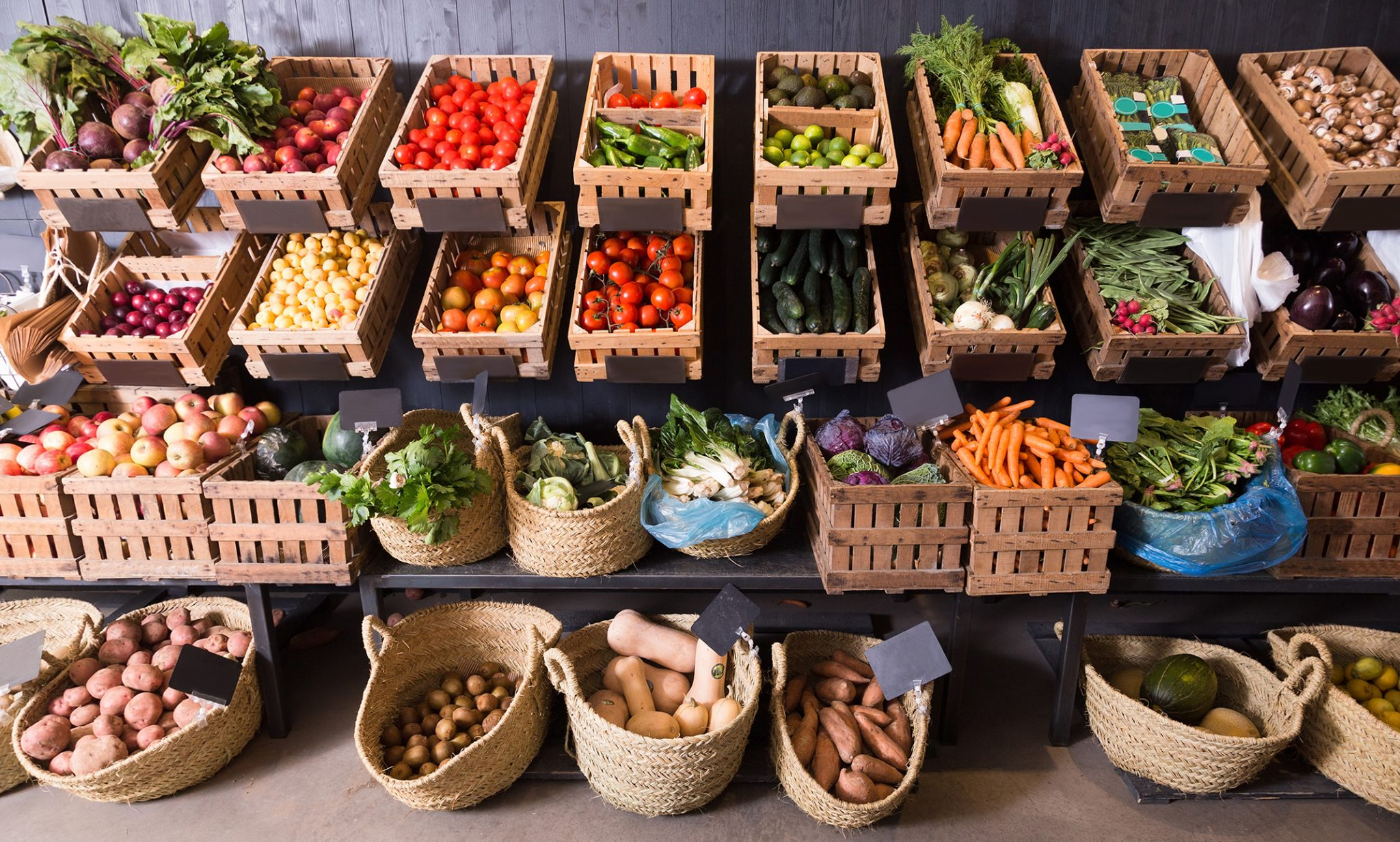 Plant-Based-Diet-
