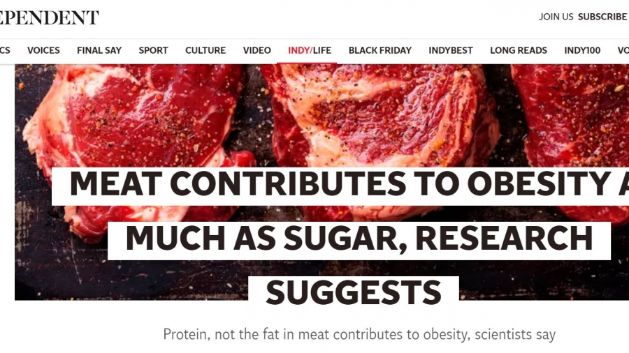 MEAT CONTRIBUTES TO OBESITY AS MUCH AS SUGAR, RESEARCH SUGGESTS
