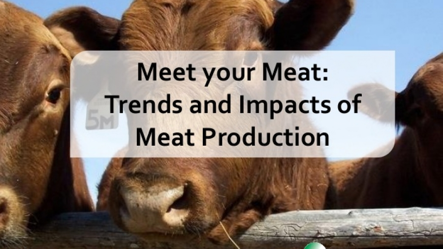 meet-your-meat-trends-and-impact-of-meat-production-1-638